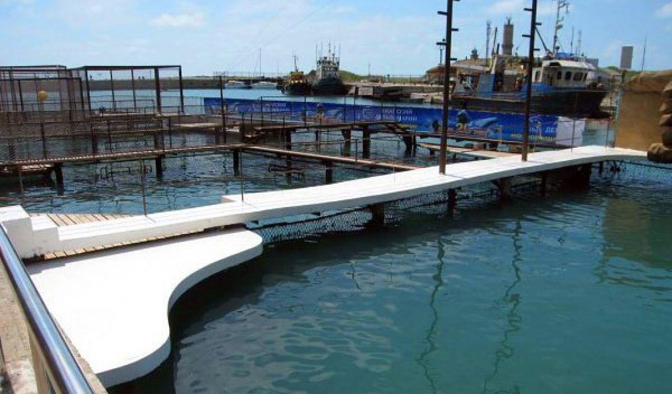 Защитное покрытие бетонных дорожек и сцены дельфинария
